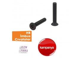 HB Imbus Cıvatalar DIN 7991